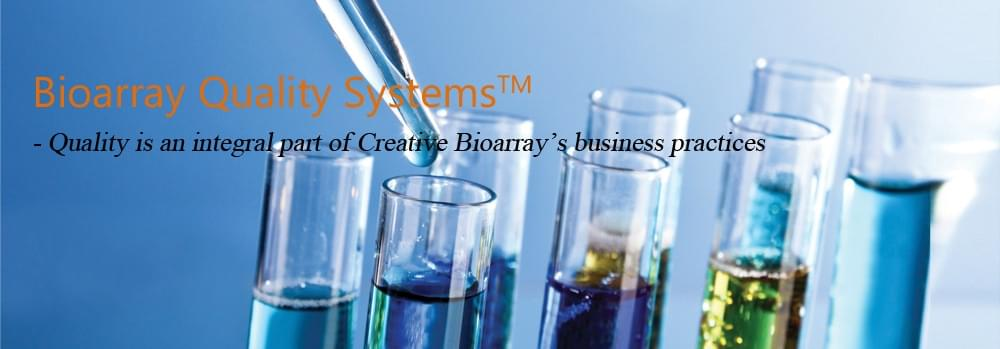 Cell Line Testing Service