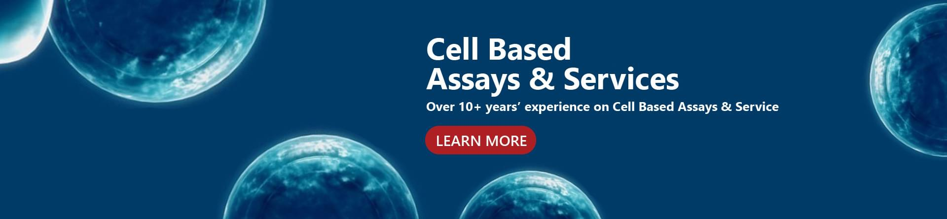 Cell Based Assays&Service